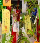 "Do you know ""Tanabata""?"